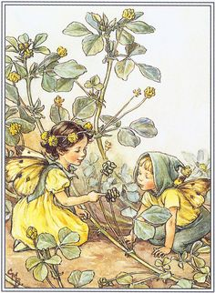 The Black Medick Fairies by sofi01, via Flickr