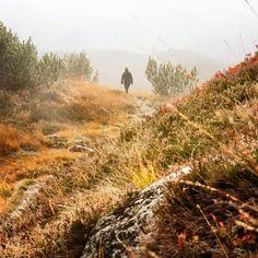 Europaschutzgebiet Wiegensee (c) Andreas Haller - Montafon Tourismus GmbH, Schruns Andreas, Country Roads, Tourism, Hiking