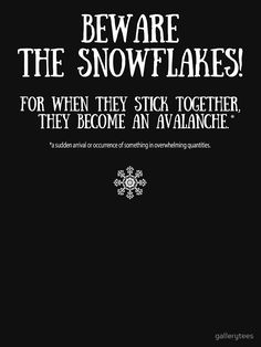 10a26043f 61 Best Liberal Snowflakes images | Liberal logic, Liberal ...