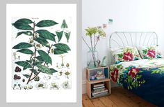 Print Pairs - cool prints, matched with interiors. See them all here: http://nzartprints.co.nz/2013/08/print/