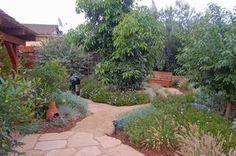 San Diego Lawn Alternatives | Steve Harbour