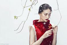 Love Moschino Fall 2019 Campaign | Fashion Gone Rogue
