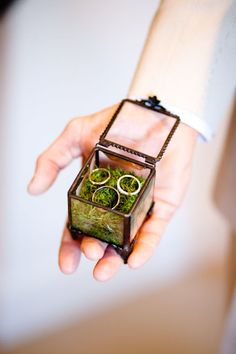 Ring box: vintage glass box with moss.  Maybe could do something similar with sand instead?