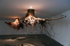 """tacticalshoyu: """" Humus, Tent Rotterdam The spectacular installation by Sicilian artist Giuseppe Licari presents a fanciful network of tree roots, which seem to transform TENT's central space. Instalation Art, Growth And Decay, Sweet Station, Art Sculpture, Tree Roots, Street Art, Environmental Art, Art Of Living, Online Art Gallery"""