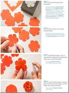 flowerdirections