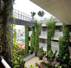Colocada dentro de un distrito de  edificios históricos y modernos rascacielos, la Escuela de Artes de Singapur aparece como una espectacular adición que destaca por su cuenta, con una extensa cubierta y fachada verde que mantiene el interior fresco y limpio del contaminado aire de la ciudad. #Arquitectura #Sustentable