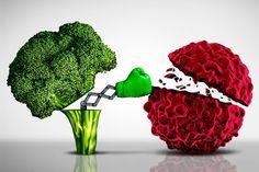 Pokrzywa i jej właściwości oraz zastosowanie w lecznictwie Plant Based Nutrition, Plant Based Diet, Gabe Brown, Keto, Paleo, Raw Feeding For Dogs, Broccoli Benefits, Longevity Diet, Cancer Fighting Foods