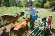 Guide to Self-Sufficient Living: Advice From Nine Modern Homesteaders » The Homestead Survival
