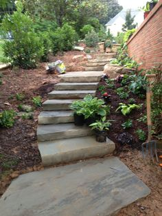 *side steps being planted June 2013