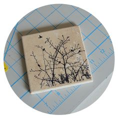 Stamped stone tile coasters
