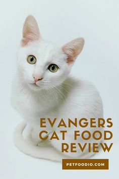 Healthy Cat Food, Chicken Livers, Meat Lovers, Dry Yeast, Food Allergies, Natural Flavors, Salmon Recipes, Cats, Gatos