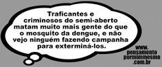 Pensamento por mim mesmo - As Frases de Fabian Balbinot: 19/12/15 - Mosquito da dengue