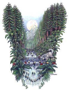 Grateful Dead Dire Wolf