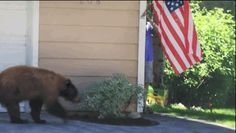 "They both were like, ""No, thank you!"" 