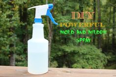 Powerful Mold and Mildew Spray