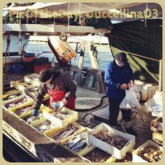 La #PicOfTheDay #turismoer di oggi profuma di salsedine e tradizione: pescatori che vendono il fresco del giorno sul molo di #Rimini   Complimenti e grazie a @uccellina03