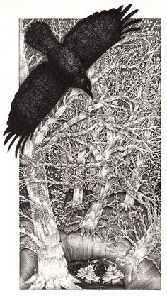 Gorgeous and Rare Illustrations for Alice in Wonderland by John Vernon Lord – Brain Pickings John Vernon, Arte Obscura, Crows Ravens, Adventures In Wonderland, Through The Looking Glass, Bird Art, Graphic, Bunt, Fairy Tales