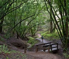 Best Weekend Hikes All Over the Country | Best Detour: Rancho San Antonio Park and Open Space Preserve