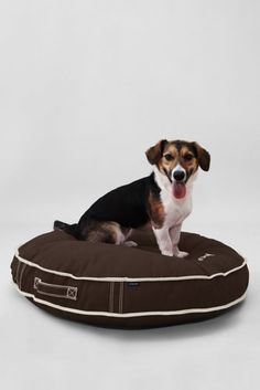 The navy color...Round Canvas Dog Bed Cover or Insert from Lands' End