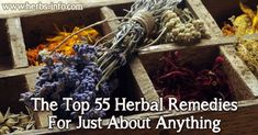 The Top 55 Herbal Remedies For Just About Anything ►► http://www.herbs-info.com/blog/the-top-55-herbal-remedies-for-just-about-anything/?i=p