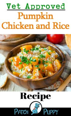Dog Food Recipes- Give this Vet approved pumpkin chicken and rice recipe a try to Soothe Your Dog's Tummy Trouble. Vet approved recipe to soothe dog tummy trouble. 4 ingredients and easy to make + two other tips to help if your dog has a sensitve stomach. Food Dog, Make Dog Food, Puppy Food, Diy Food, Dog Treat Recipes, Baby Food Recipes, Easy Recipes, Grain Free Dog Food, Tomate Mozzarella