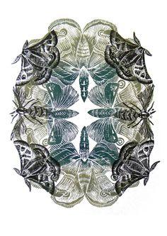 Moths Original Lino Cut Print £45.00