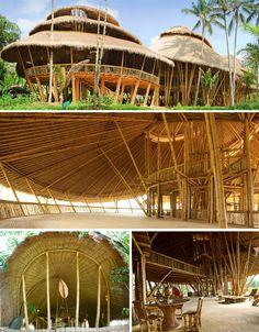 bambú-edificios-verde-escuela