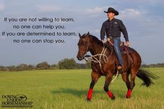 Horse training quotes clinton anderson 40 ideas for 2019 Clinton Anderson, Western Horsemanship, Natural Horsemanship, Training Quotes, Horse Training Tips, Horse Tips, Running Training, Equestrian Quotes, Equestrian Problems