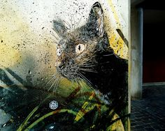 Another one by C215.