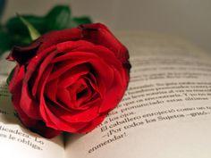 libros y rosas - Buscar con Google