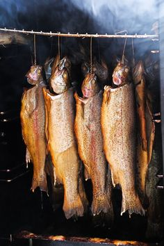 Find images of Smoked Fish. ✓ Free for commercial use ✓ No attribution required ✓ High quality images. Smoking Images, Smoked Fish, Yummy Treats, Food And Drink, Meat, Animal Pictures, Syrup, Crickets