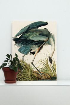 Prints op hout Heron in gras