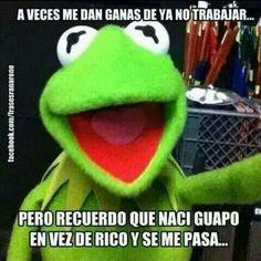 37 Mejores Imagenes De Memes Rana Rene Rana Rene Memes De La