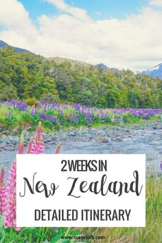 New Zealand: a country I've wanted to visit for a long time! I only had two weeks at the end of December to work with, which is the time usually recommended to visit just one of the two main …