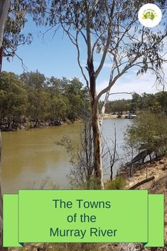 The Towns of the Murray River range from large cities to sleepy villages but they all have something to offer the tourist. We explore four of the biggest. Vista House, Murray River, Rio Vista, Shady Tree, South Australia, Nice View, Places To See, The Good Place, Things To Do