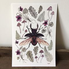 Stag Beetle A4 giclee print  violets mushrooms by thefloralfoxart