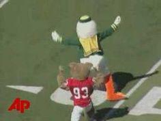 Oregon Ducks vs. Houston Cougars - Mascot Fight. Yes.