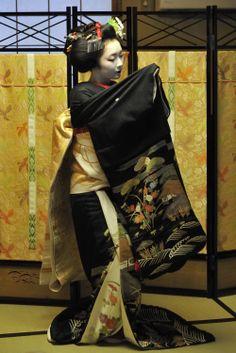"Dance of ""kurokami"" (black hair) of time of 先笄 sakkou, hairstyle for last two weeks as a maiko Japanese Kimono, Japanese Art, Kyoto, Buda Zen, Kabuki Costume, Geisha Art, Memoirs Of A Geisha, Madame Butterfly, Geishas"