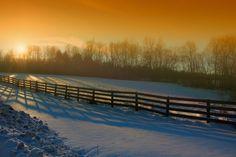 Sunlit Meadow by Chris Lockwood, via 500px