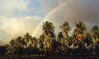 Molokai - Old Hawaii. The Most Hawaiian Island -- Molokai Best Hawaiian Island, Hawaiian Islands, Places Ive Been, Places To Go, Hawaii Tourism, Aloha Spirit, Flourishes, Forests, Rainbows