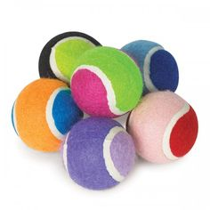 Pet Toy, 2pc Tennis Ballwprint.Item Number:500129.Welcome To Visit Epennyshop.com, We Are online Dollar Store, To Provide You With 12000 + Item 99 Cents And One Dollar Merchandise, Including Health & Beauty, Office & School, Toys & Crafts, Household, Food, Pet, Phone Accessories , Seasonal & Holidays, Party Supplies And More, We Want To Be Your Exclusive  Online Dollar Store, Welcome To Buy Our online Dollar Store High-quality Low-priced Goods.we Also Offer These Special Promotions:* Join…