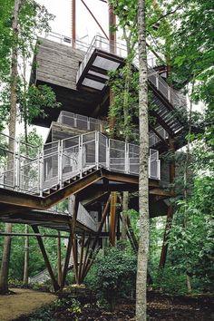 Sunstainable Treehouse | Mithun