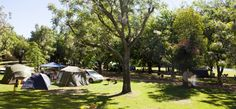 Camping trips are what summer is all about! Travelstart reveals the best campsites around South Africa to pitch your tent and relax over the holidays. Provinces Of South Africa, Africa Travel, Campsite, Glamping, Tent, Dolores Park, African, River, Cape Town