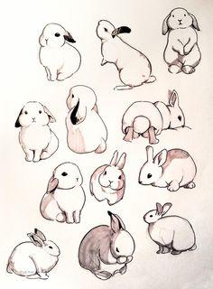Cute Animal Drawings, Animal Sketches, Cool Drawings, Drawing Sketches, Drawing Ideas, Art Inspiration Drawing, Drawings Of Animals, Bunny Sketches, Adorable Drawings