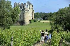 Château  De Brissac,  France