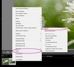 Liberating Your Lightroom Files: Exporting | Pretty Presets for Lightroom