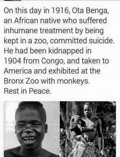 This is they think we evolved from primates. they are monsters Black History Facts, Black History Month, Weird Facts, Fun Facts, Black Pride, The More You Know, African American History, Black Power, Black People