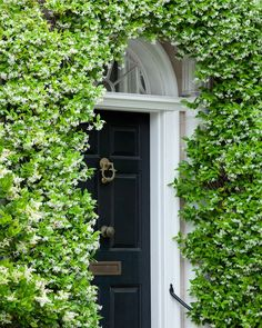 Door Wrapped Around with Flowers, Charleston, SC © Doug Hickok All Rights ReservedHue and Eye Photography