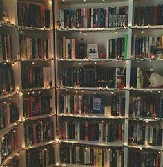 a dream bookcase
