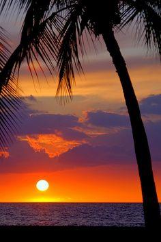 Hawaii - palms framing a sunset on a tropical island beach paradise #paradise #beach #palms